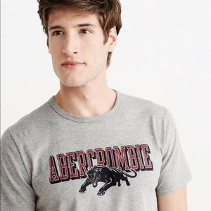 Abercrombie & Fitch Varsity Graphic Tee